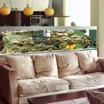 Использование аквариума с пользой