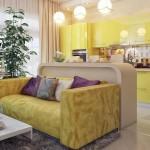 Совмещенная гостиная с кухней